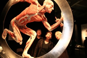 Photo credit: Body Worlds Vital.