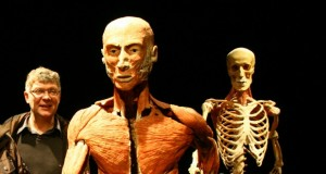 body worlds feature